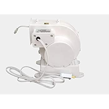 Amazon.com: Replacement Yard Inflatable Blower Motor Fan ...