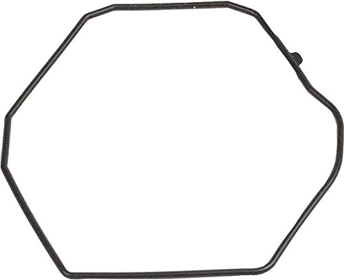 Casio 10262815 Genuine Factory Casio Replacement Part Case Back Gasket O-Ring fits PAG-110C PAW-1300 PAW-1400 PAW-1500 PRG-110 PRG-130 PRW-1300 PRW-1500 (Casio Paw1500 1v)