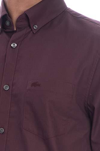 Lacoste Lunga Manica Camicia Bordeaux Uomo 0rBZ0nqw