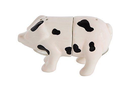 Creative Co-Op Pig Shaped Magnetic Salt & Pepper Shakers