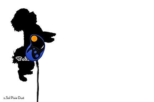 Bichon Frise - Custom Name Dog Leash Holder - Wall Hook