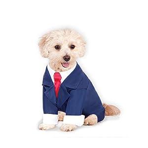 Business Suit for Pet, Medium 24