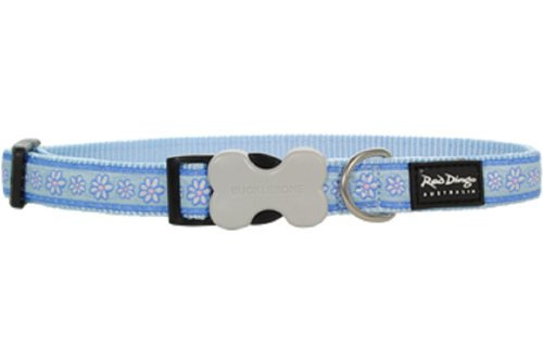 Red Dingo Designer Dog Collar, Large, Daisy Chain Light Blue