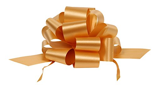 Premier Retail AMZ-PF915 25 Count Packaging Flora Satin Pull Bow Ribbon, 5-1/2 by 18
