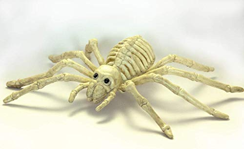 Plastic Scary Skeleton Spiders with Black Cotton Web,