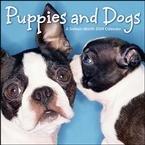 Dog 2009 Calendar - 8