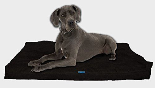 Five Diamond Collection Shredded Memory Foam Orthopedic Bed with Removable Washable Cover and Water Proof Inner Fabric, Extra Large (55-Inch-by-37-Inch), Black Microfiber, for Dogs