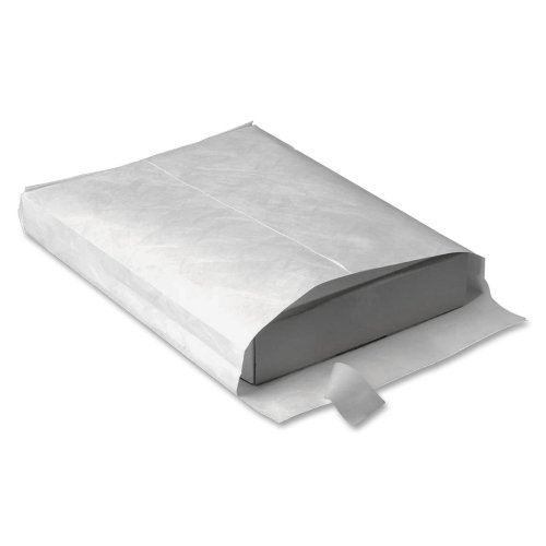 White End Plain Envelopes Expansion (Wholesale CASE of 2 - Quality Park Tyvek Open-End Expansion Envelopes-Tyvek Open-End Envelope,Plain,12