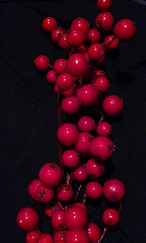 Red Crab Apple Berry Garland 6FT