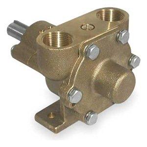 (Dayton 3ACB1 Pump, Pedestal, Inlet/Outlet 3/4 In.)