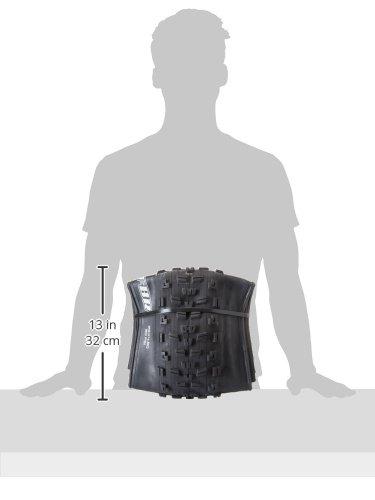 Maxxis Reifen Minion Fatbike Falt schwarz
