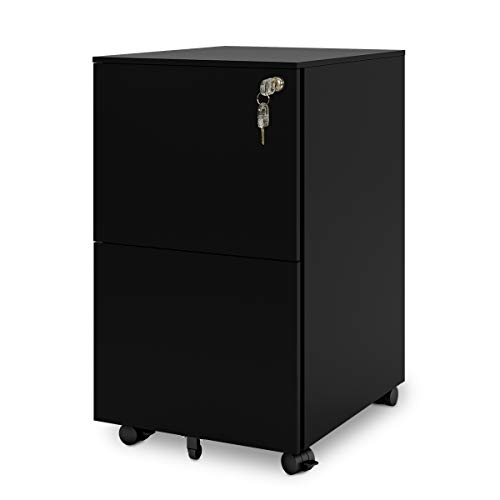 (DEVAISE 2-Drawer Mobile File Cabinet with Lock, Commercial Vertical Cabinet in Black)
