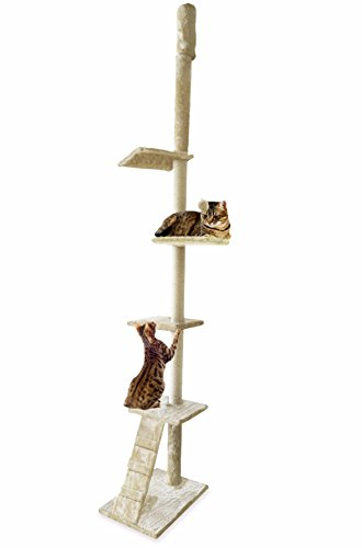 FurHaven Pet Cat Tree | Tiger Tough Cat Tree House Furniture for Cats & Kittens, Ladder Playground, Cream