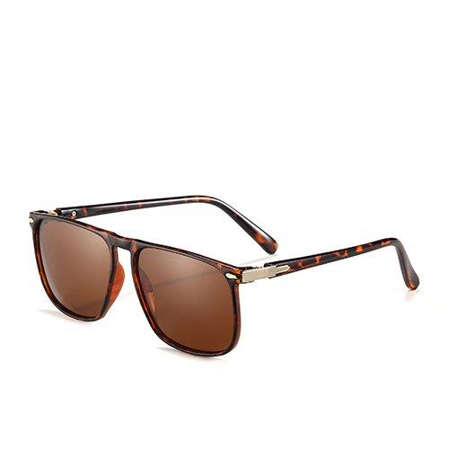 de Lunettes Lunettes pour de pour Piazza C3 Voyage Hommes Polarisé Plastique Sunglasses Guide Soleil en Vêtements Hommes TL Demi Brown Lunettes CwFnvBqzxg