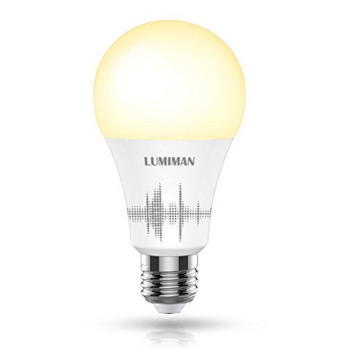 Smart Light Bulb, Wifi Smart Light Bulb with 50W Equivalent, Dimmable Warm White and A19 E26 Edison Bulb, Compatible with Alexa and Google Home, No Hub Required, LUMIMAN LM510