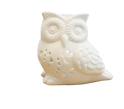 Owl Shaped Patio Lights in Florida - 8
