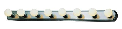 Trans Globe Lighting 3248 BN Indoor Northridge 48