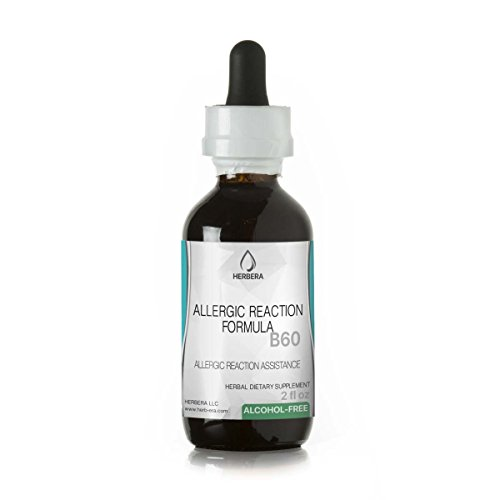 Allergic Reaction Formula B60 Alcohol Free Herbal Extract Tincture  Organic Herbs  Galangal Root  Licorice Root  Stinging Nettle Root   2 Fl Oz