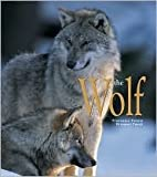 img - for The Wolf book / textbook / text book