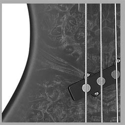 Traben Basses Array Attack 5 Series TRAAA5BKB 5-String Bass Guitar, Black Burl from Traben