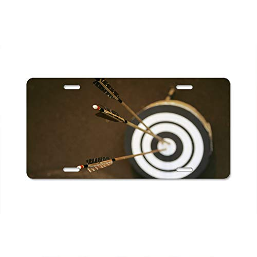 Pulongpoq Funny License Plate Cover with 4 Holes Three Arrows Bullseye Designed Decorative Metal Car License Plate Auto Tag ()