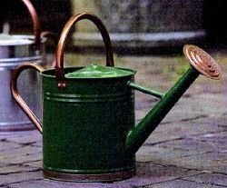 Gardman 8327 Hunter Green Galvanized Steel Watering Can with Copper Accents, 1-Gallon (2 Pack) by Gardman