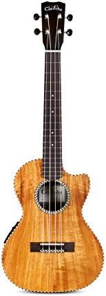 Cordoba Guitars 4 String 25T CE Cut Away