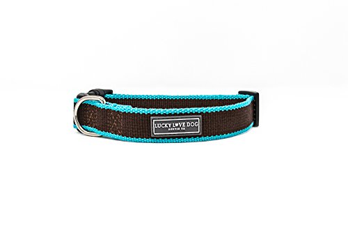 Collection Team Basics (LuckyLoveDog Bamboo Collar Zilker Collection (Small, Brown/Aqua) (10-16