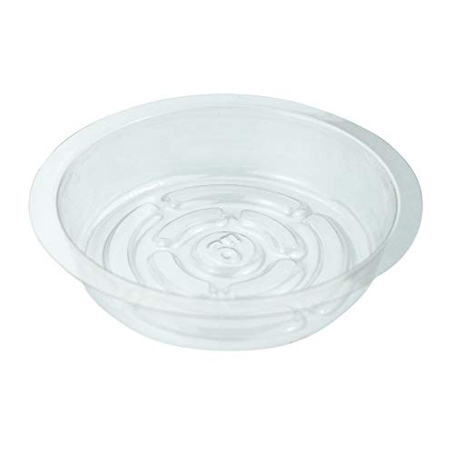 PHYEX 12 Pack of 6 inch Clear Plastic Plant Saucers, Durable Plant Tray for Indoor and Outdoor Plants