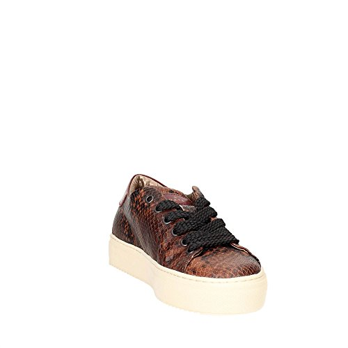 53i Brune Donne Basse Sneakers Newman Data wRxq8aU7n