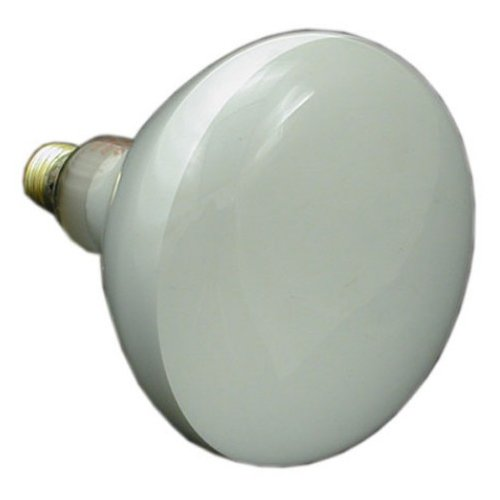 Zodiac R0450501 12-Volt/100-Watt Lamp Replacement for Select Zodiac Jandy Pool and Spa White Incandescent Light