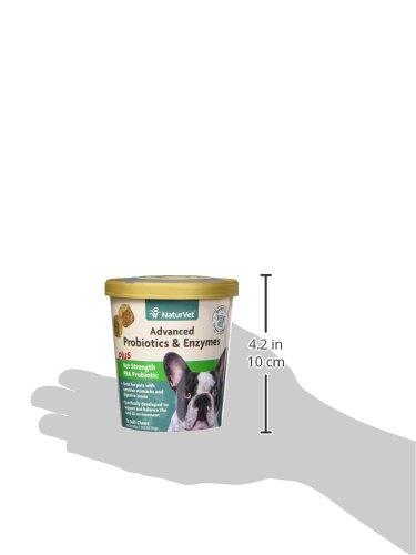 Garmon Corp Veterinarian Strength Probiotics