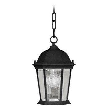 Livex Lighting 7559-04 Hamilton 1 Light Outdoor Hanging Lantern, Black Hamilton 4 Light Bath