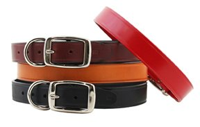 "Auburn Leathercrafters Town Dog Collars-Ten-3/8"" x 8"""