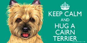 Cairn Terrier Dog Gift - 'KEEP CALM' LARGE colourful 4' x 8' MAGNET - High Quality flexible magnet for indoor or outdoor use for your Fridge, Car, Caravan or use on any flat metal surface -Water proof and UV resistant. Car-Pets Ltd