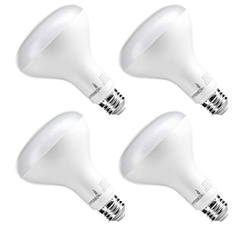 Outdoor Recessed Light Bulbs in US - 9