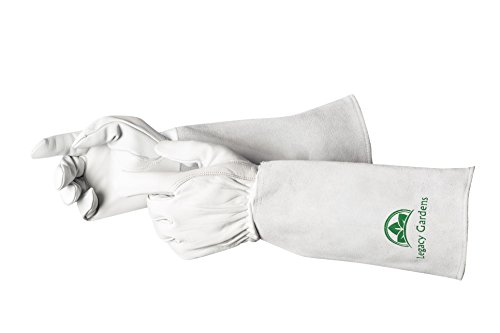 Legacy Gardens Leather Gardening Gloves for Women and Men | Thorn and Cut Proof Garden Work Gloves with Long Heavy Duty Gauntlet | Suitable For Thorny Bushes Cacti Rose Pruning Landscaping Work-Small