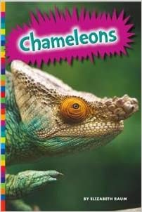 Book Chameleons (Lizards)