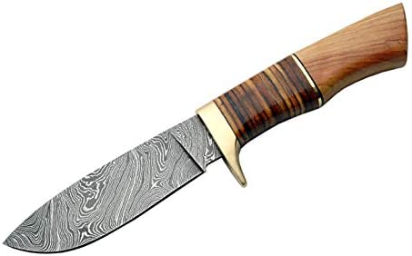 SZCO Supplies DM-1100 Damascus Stacked Leather Olivewood Hunting Knife