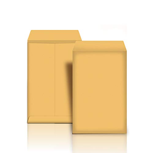 AmazonBasics Catalog Mailing Envelopes, Peel & Seal, 6x9 Inch, Brown Kraft, 250-Pack