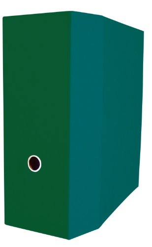 Aurora Recycled D-ring Binder - Aurora GB Elements Storage Binder, 5 Inch D-Ring, 8 1/2 x 11 Inch Size, Green, Linen Embossed, Eco-Friendly, Recyclable, Made in USA (AUA10096)