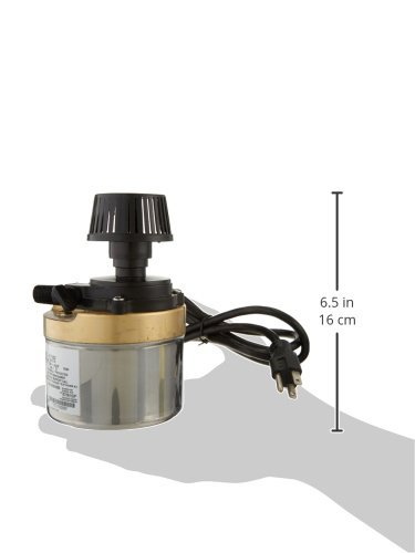 Little Giant 517002 Stainless Steel 320GPH Pump with 6-Feet Cord, Bronze by Little Giant (Image #2)
