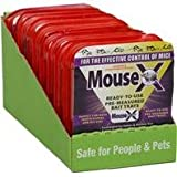 DPD MOUSEX Single Serving Bait Tray - Size: 1 Tray