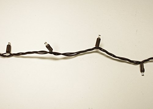 String Christmas Lights Together : LED Christmas Light String 100 Warm White Wide Angle (5mm Concave) Lights on Brown Wire/Cord ...