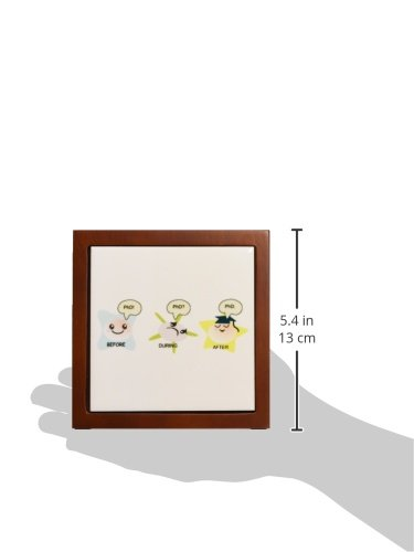 3dRose ph/_165150/_1 PhD Funny Process Cartoon Before During After Humorous Graduation Gift-Tile Pen Holder 5-Inch