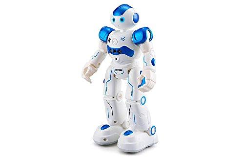 Rctecnic - Robótica Robot RC Cady Wi - Programable y Control por Gestos: Amazon.es: Juguetes y juegos