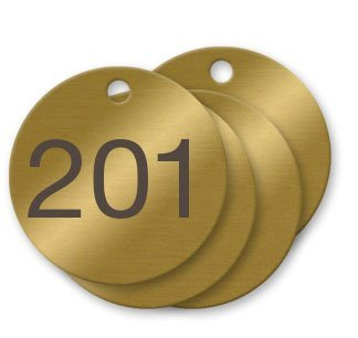 1-1/2 inch Numbered Solid Brass Valve Tags - Pack of 100 (201-300) - Made in the USA! by NapTags
