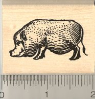 amazon com pot bellied pig rubber stamp vietnamese miniature pig