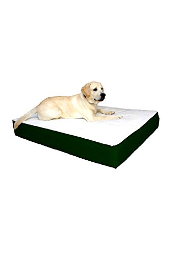 34x48 Green Orthopedic Double Pet Dog Bed By Majestic Pet Products  Large Cushion to Extra Large With Removable Washable Cover