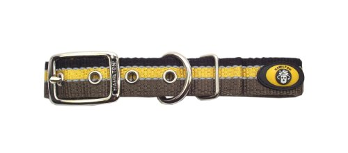 Hamilton Double Thick Deluxe Dog Collar with Reflective Threads, 1 by 22-Inch, Brown/Gold/Black